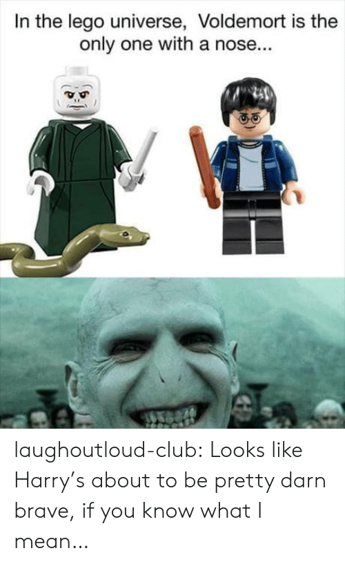 Club, Lego, and Tumblr: In the lego universe, Voldemort is the  only one with a nose... laughoutloud-club:  Looks like Harry's about to be pretty darn brave, if you know what I mean…