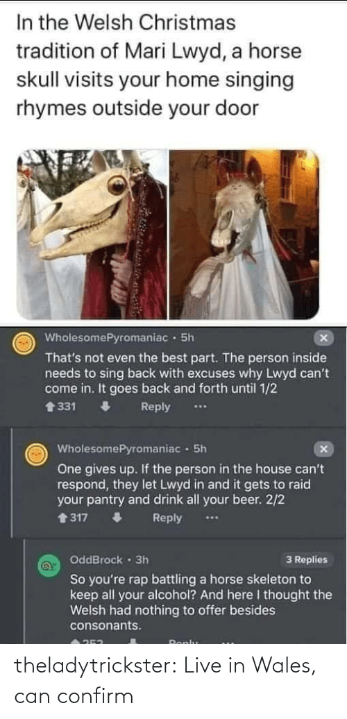 2 2: In the Welsh Christmas  tradition of Mari Lwyd, a horse  skull visits your home singing  rhymes outside your door  WholesomePyromaniac · 5h  That's not even the best part. The person inside  needs to sing back with excuses why Lwyd can't  come in. It goes back and forth until 1/2  會331  Reply  WholesomePyromaniac · 5h  One gives up. If the person in the house can't  respond, they let Lwyd in and it gets to raid  your pantry and drink all your beer. 2/2  1317  Reply  OddBrock · 3h  3 Replies  So you're rap battling a horse skeleton to  keep all your alcohol? And here I thought the  Welsh had nothing to offer besides  consonants.  Ronlu theladytrickster:  Live in Wales, can confirm
