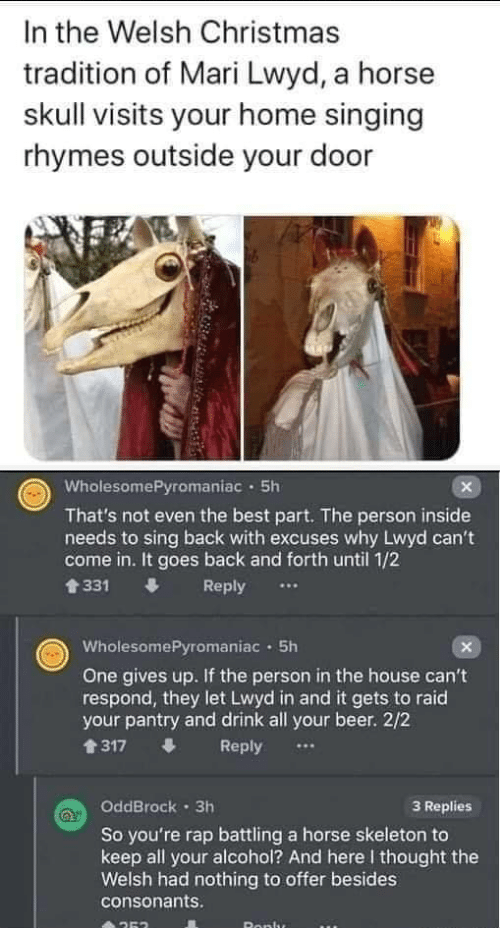 2 2: In the Welsh Christmas  tradition of Mari Lwyd, a horse  skull visits your home singing  rhymes outside your door  WholesomePyromaniac · 5h  That's not even the best part. The person inside  needs to sing back with excuses why Lwyd can't  come in. It goes back and forth until 1/2  會331  Reply  WholesomePyromaniac · 5h  One gives up. If the person in the house can't  respond, they let Lwyd in and it gets to raid  your pantry and drink all your beer. 2/2  1317  Reply  OddBrock · 3h  3 Replies  So you're rap battling a horse skeleton to  keep all your alcohol? And here I thought the  Welsh had nothing to offer besides  consonants.  Ronlu