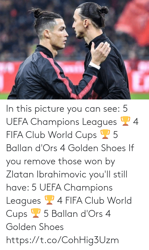those: In this picture you can see:  5 UEFA Champions Leagues 🏆 4 FIFA Club World Cups 🏆 5 Ballan d'Ors 4 Golden Shoes   If you remove those won by Zlatan Ibrahimovic you'll still have:   5 UEFA Champions Leagues 🏆 4 FIFA Club World Cups 🏆 5 Ballan d'Ors 4 Golden Shoes https://t.co/CohHig3Uzm