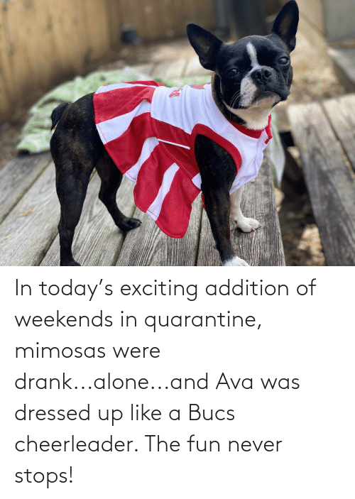 exciting: In today's exciting addition of weekends in quarantine, mimosas were drank...alone...and Ava was dressed up like a Bucs cheerleader. The fun never stops!