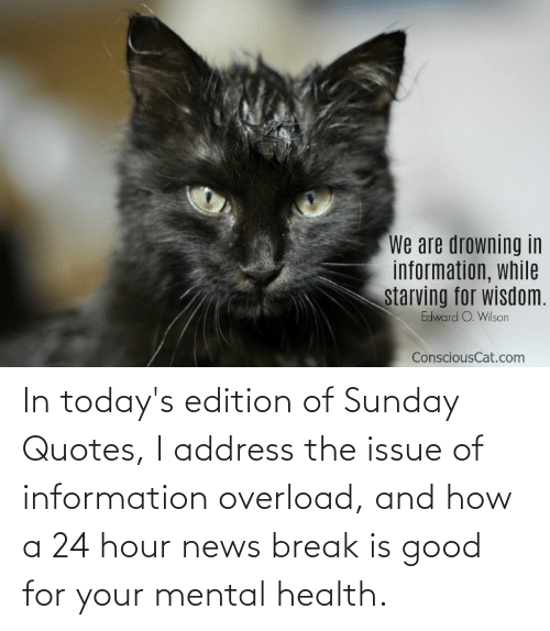 Todays: In today's edition of Sunday Quotes, I address the issue of information overload, and how a 24 hour news break is good for your mental health.