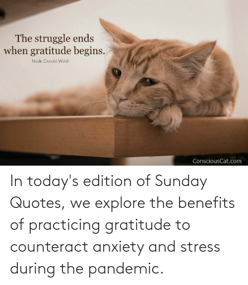 explore: In today's edition of Sunday Quotes, we explore the benefits of practicing gratitude to counteract anxiety and stress during the pandemic.