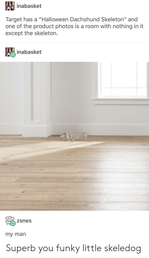 """dachshund: inabasket  Target has a """"Halloween Dachshund Skeleton"""" and  one of the product photos is a room with nothing in it  except the skeleton.  inabasket  zsnes  my man Superb you funky little skeledog"""