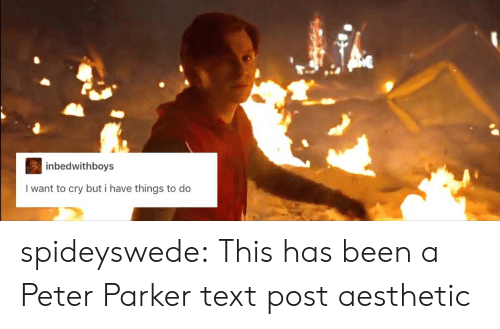 Target, Tumblr, and Aesthetic: inbedwithboys  I want to cry but i have things to do spideyswede: This has been a Peter Parker text post aesthetic