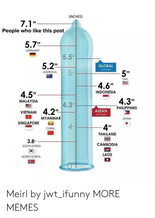 "Indonesia: (INCHES)  People who like this post  5.7""  GERMANY  5.5""  5.2""  GLOBAL  Average  5""  AUSTRALIA  USA  4.6""  INDONESIA  4.5""  4.3""  MALAYSIA  4.3""  PHILIPPINES  ASEAN  Average  VIETNAM  MYANMAR  JAPAN  SINGAPORE  4  4""  CHINA  THAILAND  CAMBODIA  LAOS  3.8""  SOUTH KOREA  NORTH KOREA Meirl by jwt_ifunny MORE MEMES"