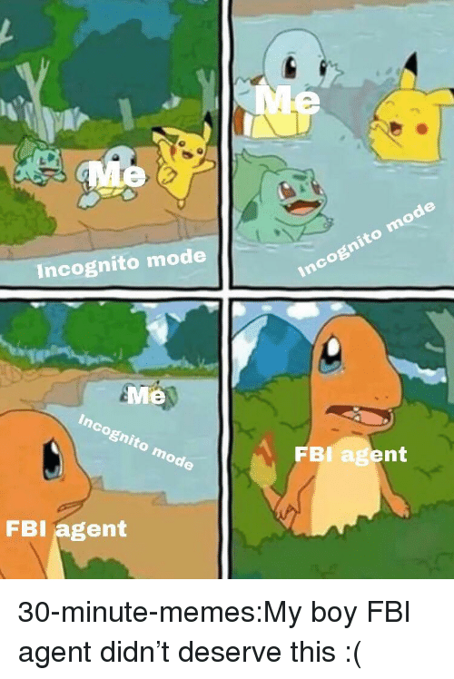 Incognito Mode Me FBI Agent FBI Agent 30-Minute-memesMy Boy