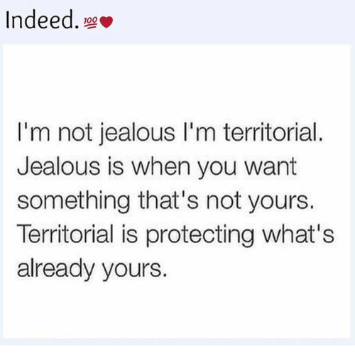 Jealous, Memes, and Indeed: Indeed.  I'm not jealous I'm territorial  Jealous is when you want  something that's not yours.  Territorial is protecting what's  already yours.