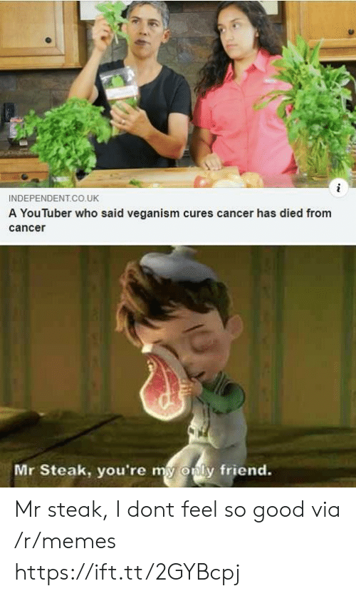 Memes, Cancer, and Good: INDEPENDENT.CO.UK  A You luber who said veganism cures cancer has died from  cance  Mr Steak, you're my  only friend. Mr steak, I dont feel so good via /r/memes https://ift.tt/2GYBcpj