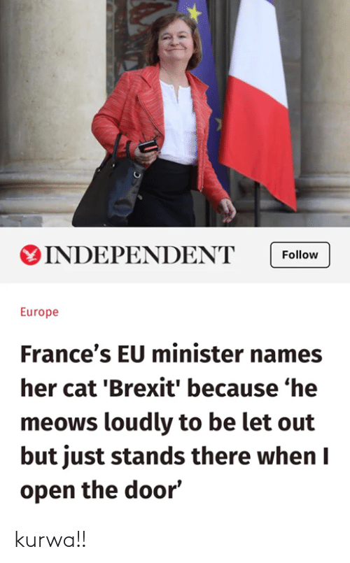 Europe, Polandball, and Brexit: INDEPENDENT Follow  Europe  France's EU minister names  her cat 'Brexit' because 'he  meows loudly to be let out  but just stands there when I  open the door' kurwa!!