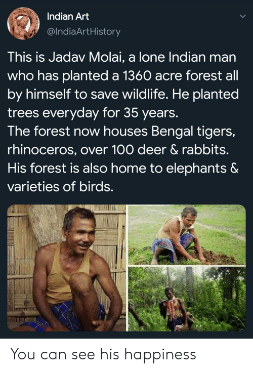 Deer, Birds, and Home: Indian Art  @IndiaArtHistory  This is Jadav Molai, a lone Indian man  who has planted a 1360 acre forest all  by himself to save wildlife. He planted  trees everyday for 35 years.  The forest now houses Bengal tigers,  rhinoceros, over 100 deer & rabbits.  His forest is also home to elephants &  varieties of birds. You can see his happiness