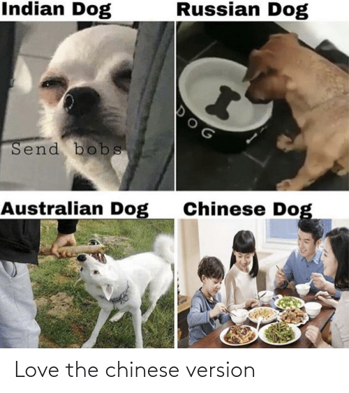 Chinese: Indian Dog  Russian Dog  Send bobs  Australian Dog  Chinese Dog Love the chinese version