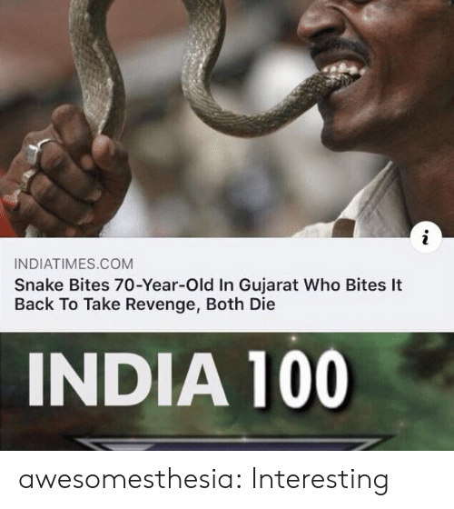 Revenge, Tumblr, and Blog: INDIATIMES.COM  Snake Bites 70-Year-Old In Gujarat Who Bites It  Back To Take Revenge, Both Die  INDIA 100 awesomesthesia:  Interesting
