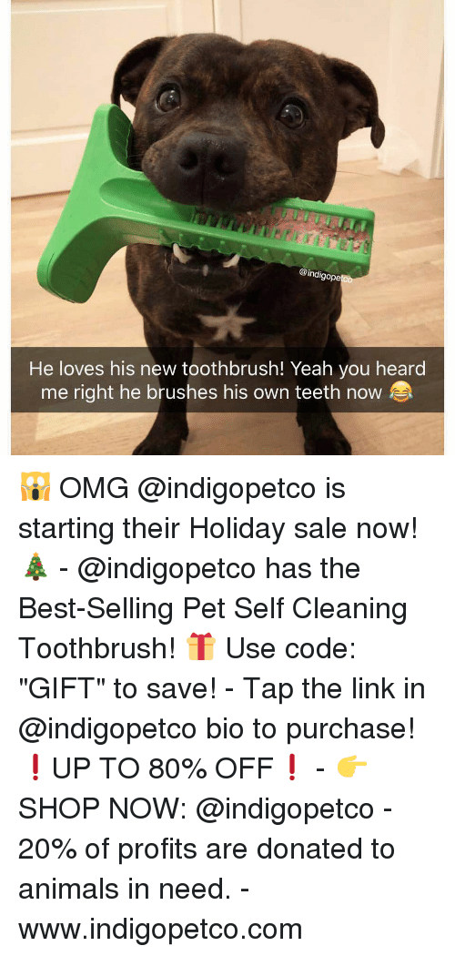 "Animals, Funny, and Memes: @indigope  He loves his new toothbrush! Yeah you heard  me right he brushes his own teeth now 🙀 OMG @indigopetco is starting their Holiday sale now! 🎄 - @indigopetco has the Best-Selling Pet Self Cleaning Toothbrush! 🎁 Use code: ""GIFT"" to save! - Tap the link in @indigopetco bio to purchase! ❗️UP TO 80% OFF❗️ - 👉 SHOP NOW: @indigopetco - 20% of profits are donated to animals in need. - www.indigopetco.com"