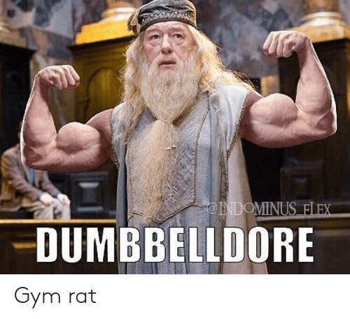 Flexing, Gym, and Rat: INDOMINUS FLEX  DUMBBELLDORE Gym rat