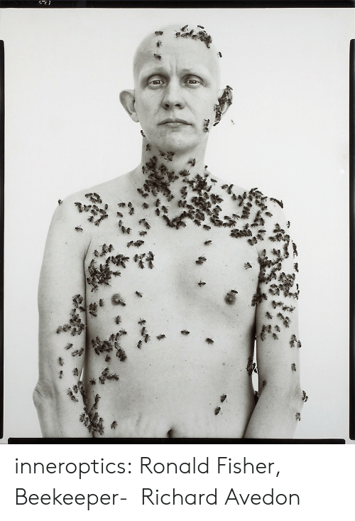 richard: inneroptics:    Ronald Fisher, Beekeeper-   Richard Avedon