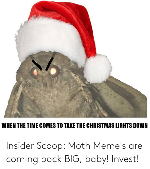Memes Are Coming: Insider Scoop: Moth Meme's are coming back BIG, baby! Invest!