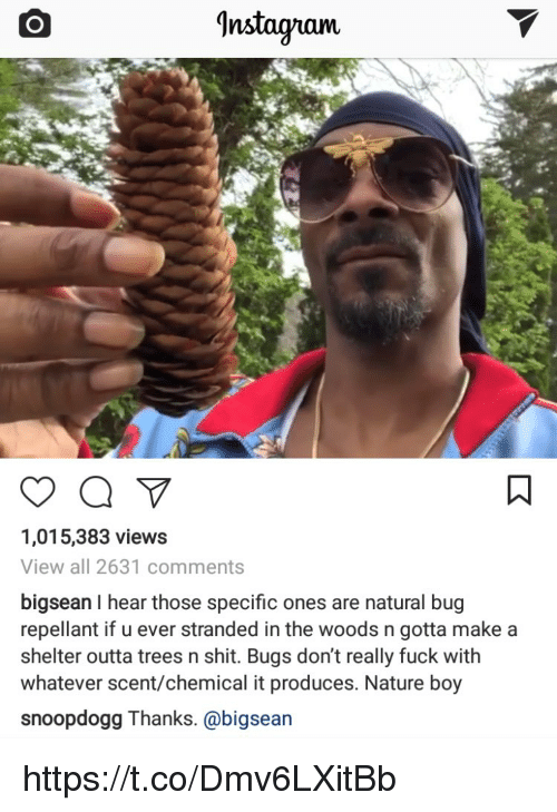 Instagram, Memes, and Shit: Instagram.  1,015,383 views  View all 2631 comments  bigsean I hear those specific ones are natural bug  repellant if u ever stranded in the woods n gotta make a  shelter outta trees n shit. Bugs don't really fuck with  whatever scent/chemical it produces. Nature boy  snoopdogg Thanks. @bigsean https://t.co/Dmv6LXitBb