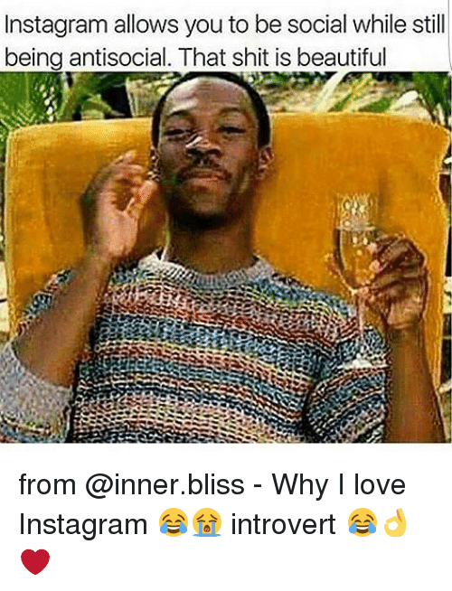 blissful: Instagram allows you to be social while still  being antisocial. That shit is beautiful from @inner.bliss - Why I love Instagram 😂😭 introvert 😂👌❤️