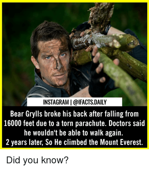 Instagram, Memes, and Bear: INSTAGRAM | @lFACTS.DAILY  Bear Grylls broke his back after falling from  16000 feet due to a torn parachute. Doctors said  he wouldn't be able to walk again.  2 years later, So He climbed the Mount Everest. Did you know?