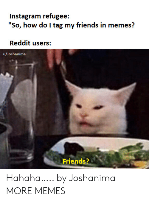 "Dank, Friends, and Instagram: Instagram refugee:  ""So, how do I tag my friends in memes?  Reddit users:  u/Joshanima  Friends? Hahaha….. by Joshanima MORE MEMES"