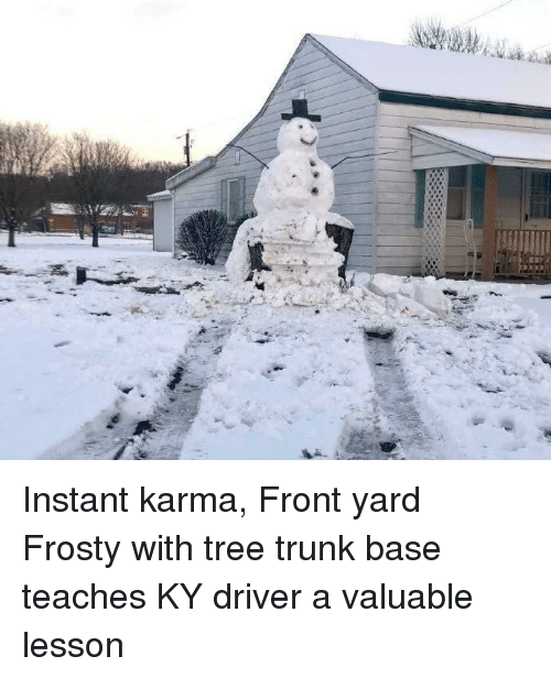 Karma, Tree, and Driver: Instant karma, Front yard Frosty with tree trunk base teaches KY driver a valuable lesson
