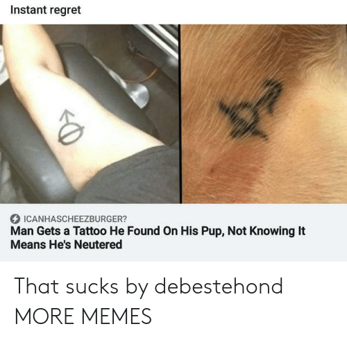 Dank, Memes, and Regret: Instant regret  ICANHASCHEEZBURGER?  Man Gets a Tattoo He Found On His Pup, Not Knowing It  Means He's Neutered That sucks by debestehond MORE MEMES