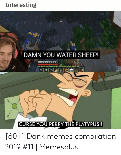 sheep: Interesting  DAMN YOU WATER SHEEP!  www  32  CURSE YOU PERRY THE PLATYPUS!! [60+] Dank memes compilation 2019 #11 | Memesplus