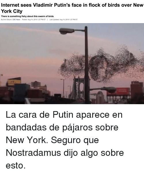 Internet, New York, and News: Internet sees Vladimir Putin's face in flock of birds over New  York City  There is something fishy about this swarm of birds  By Erin Obourn, CBC News Posted: Aug 14, 2015 1:27 PM ETLast Updated: Aug 14, 2015 1:27 PM ET <p>La cara de Putin aparece en bandadas de pájaros sobre New York. Seguro que Nostradamus dijo algo sobre esto.</p>