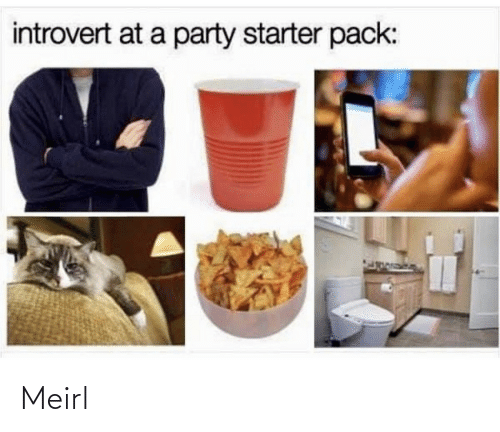 Party: introvert at a party starter pack: Meirl