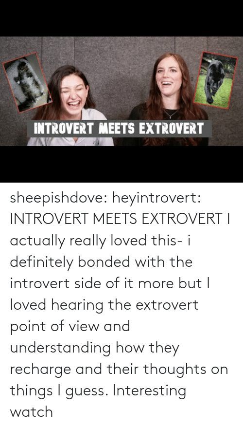 Definitely, Introvert, and Tumblr: INTROVERT MEETS EXTROVERT sheepishdove: heyintrovert: INTROVERT MEETS EXTROVERT I actually really loved this- i definitely bonded with the introvert side of it more but I loved hearing the extrovert point of view and understanding how they recharge and their thoughts on things I guess. Interesting watch