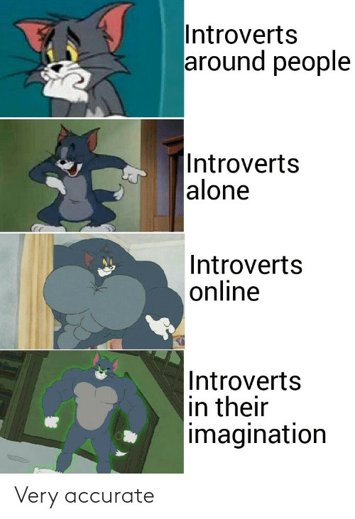imagination: Introverts  around people   Introverts  alone  Introverts  online  Introverts  in their  imagination Very accurate