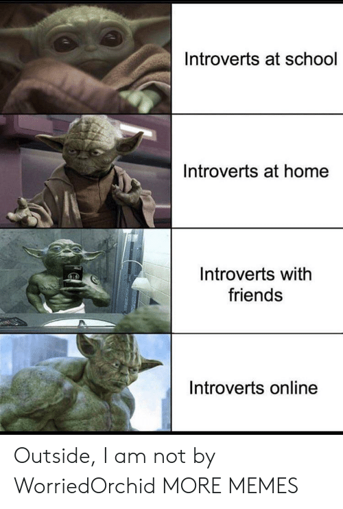 At School: Introverts at school  Introverts at home  Introverts with  friends  Introverts online Outside, I am not by WorriedOrchid MORE MEMES