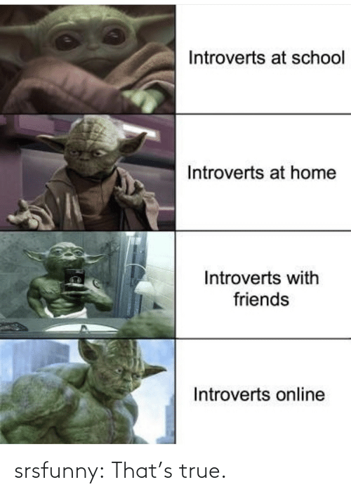 At School: Introverts at school  Introverts at home  Introverts with  friends  Introverts online srsfunny:  That's true.