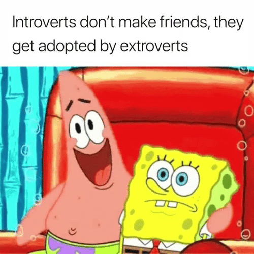 Friends, Make, and They: Introverts don't make friends, they  get adopted by extroverts  0  0