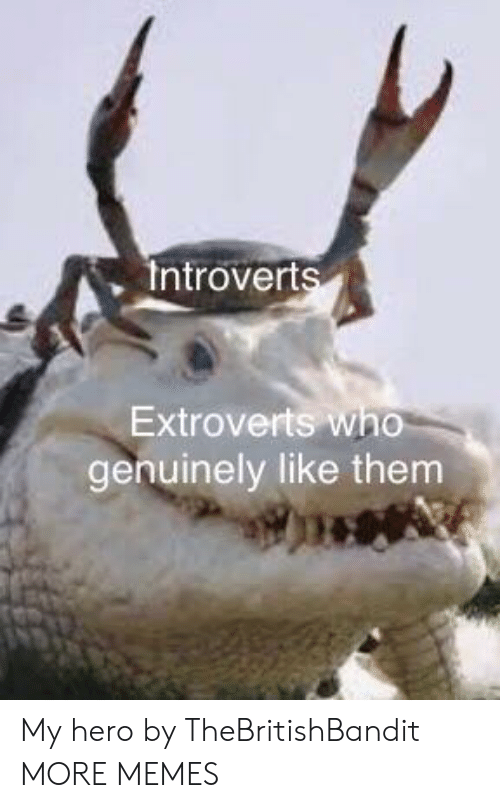 Dank, Memes, and Target: Introverts  Extroverts who  genuinely like them My hero by TheBritishBandit MORE MEMES