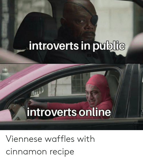 Com, Cinnamon, and Online: introverts in public  introverts online  PzS Viennese waffles with cinnamonrecipe