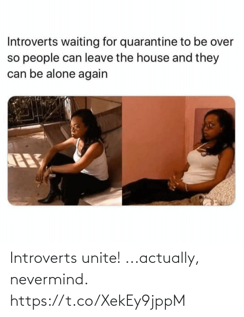 nevermind: Introverts unite! ...actually, nevermind. https://t.co/XekEy9jppM