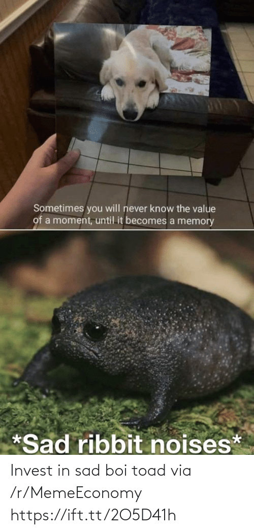 toad: Invest in sad boi toad via /r/MemeEconomy https://ift.tt/2O5D41h