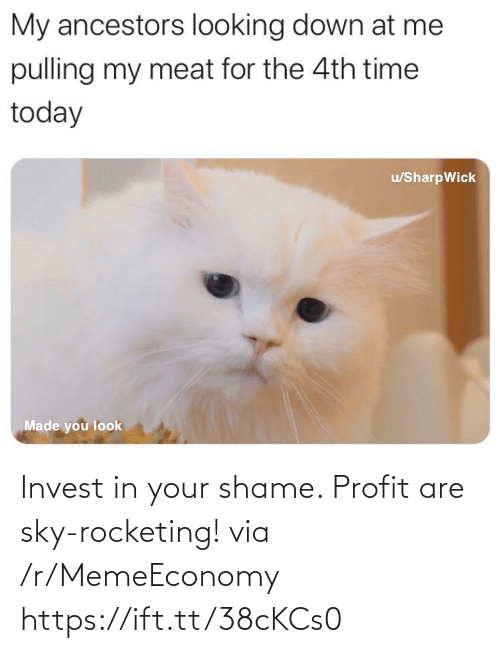 sky: Invest in your shame. Profit are sky-rocketing! via /r/MemeEconomy https://ift.tt/38cKCs0