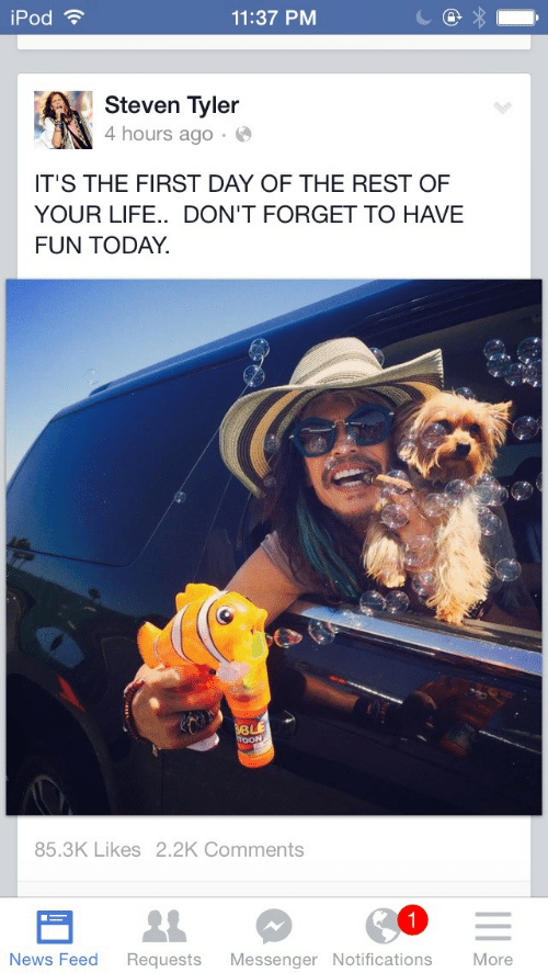 Have Fun Today: iPod ?  11:37 PM  Steven Tyler  4 hours ago · O  IT'S THE FIRST DAY OF THE REST OF  YOUR LIFE.. DON'T FORGET TO HAVE  FUN TODAY.  BLE  TOON  85.3K Likes 2.2K Comments  News Feed  More  Requests  Messenger Notifications