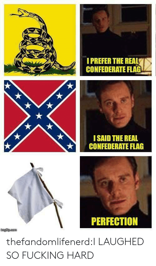 Confederate Flag, Fucking, and Tumblr: IPREFER THE REAL  CONFEDERATE FLAG  ISAID THE REAL  CONFEDERATE FLAG  PERFECTION thefandomlifenerd:I LAUGHED SO FUCKING HARD