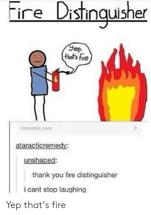 Fire, Thank You, and Com: ire Distingusher  Yep  (that's fre  totumblr.com  ataracticremedy:  unshaped:  thank you fire distinguisher  i cant stop laughing Yep that's fire