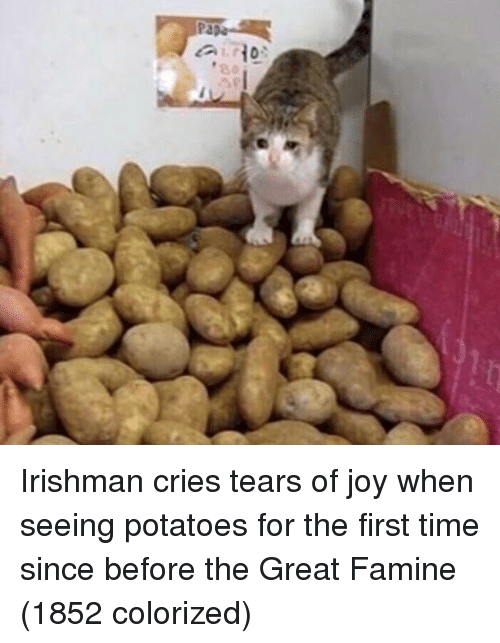 Time, Joy, and Potatoes: Irishman cries tears of joy when seeing potatoes for the first time since before the Great Famine (1852 colorized)