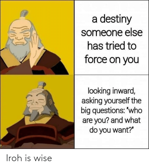 Wise: Iroh is wise