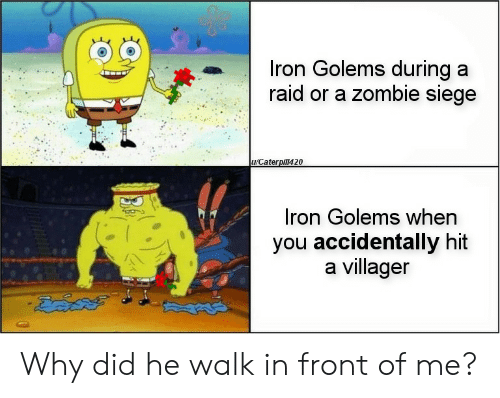 Zombie, Raid, and Iron: Iron Golems during a  raid or a zombie siege  u/Caterpill420  Iron Golems when  you accidentally hit  a villager Why did he walk in front of me?