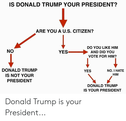 Donald Trump, Trump, and Yes: IS DONALD TRUMP YOUR PRESIDENT?  ARE YOU A U.S. CITIZEN?  DO YOU LIKE HIM  NO  YESAND DID YOU  VOTE FOR HIM?  DONALD TRUMP  IS NOT YOUR  PRESIDENT  NO. I HATE  HIM  YES  DONALD TRUMP  IS YOUR PRESIDENT Donald Trump is your President...