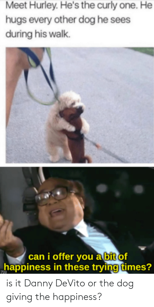 Danny Devito: is it Danny DeVito or the dog giving the happiness?