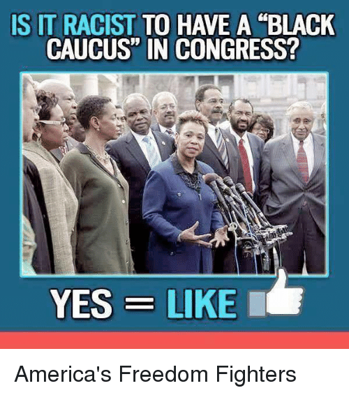 """caucuses: IS IT RACIST  TO HAVE A BLACK  CAUCUS"""" IN CONGRESS?  YES LIKE I America's Freedom Fighters"""