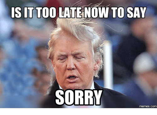 Sorry Memes: IS IT TOO  LATENOW TO SAY  SORRY  memes.co